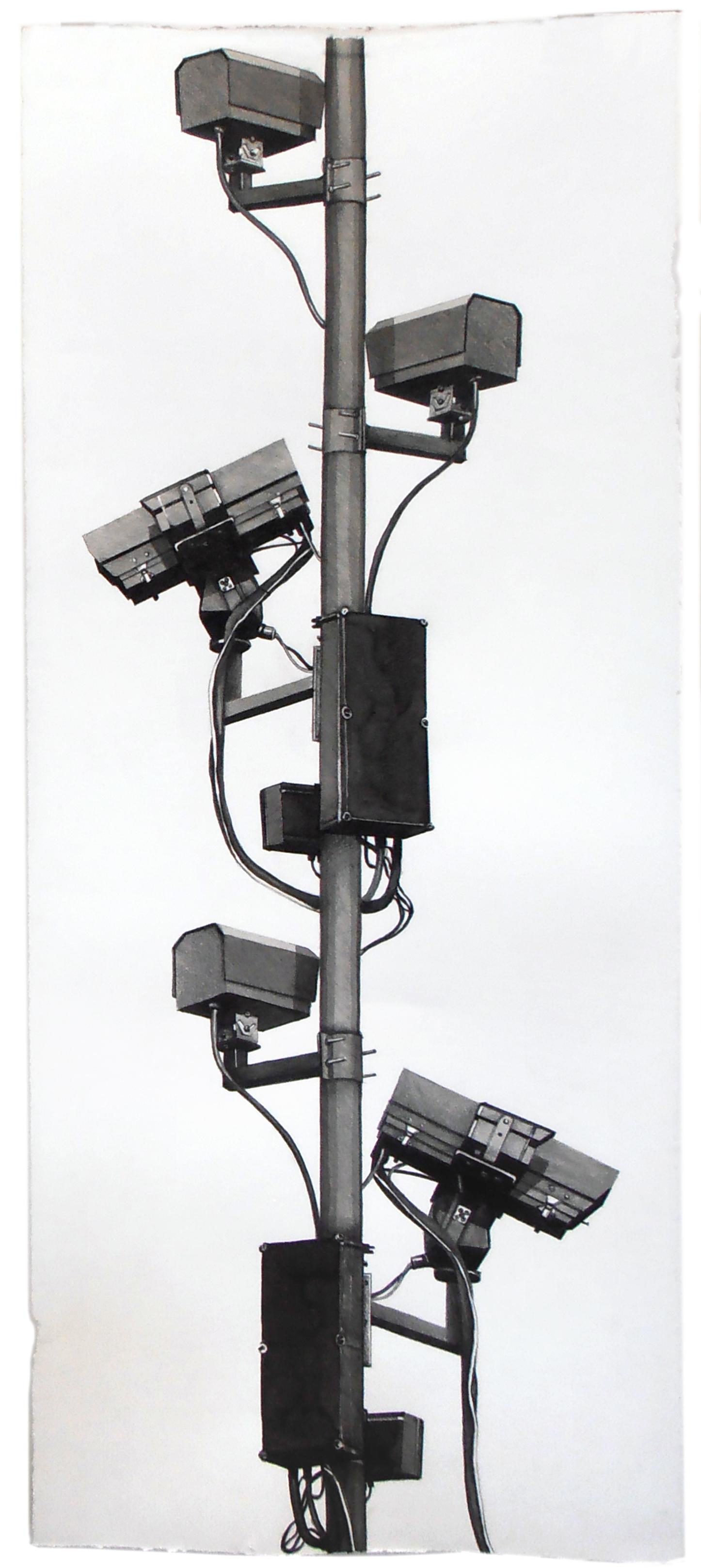 "CCTV, 36"" x 15"", 2014"