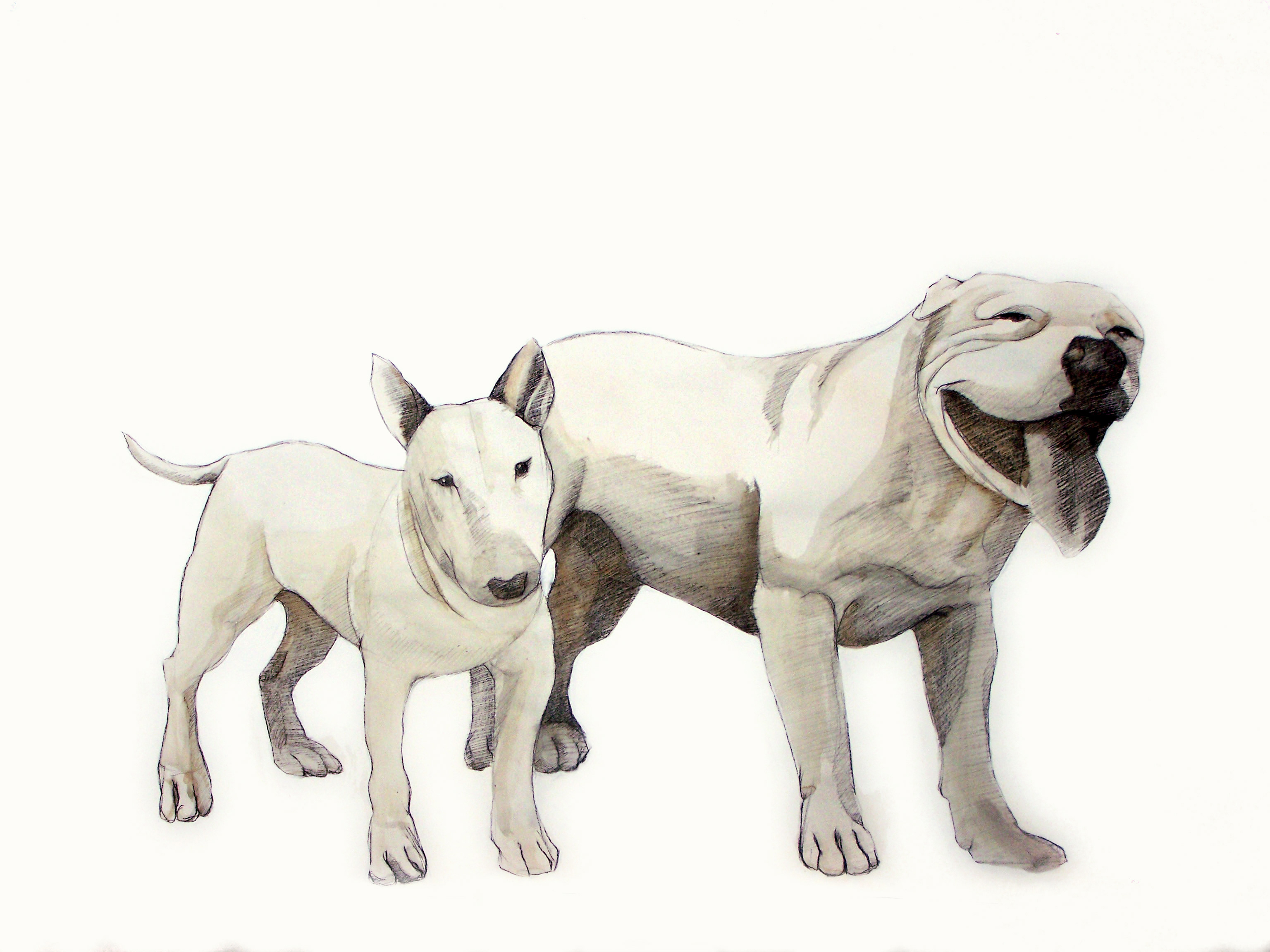 "Dog Days, 36"" x 580"", charcoal, gesso & blood on paper"