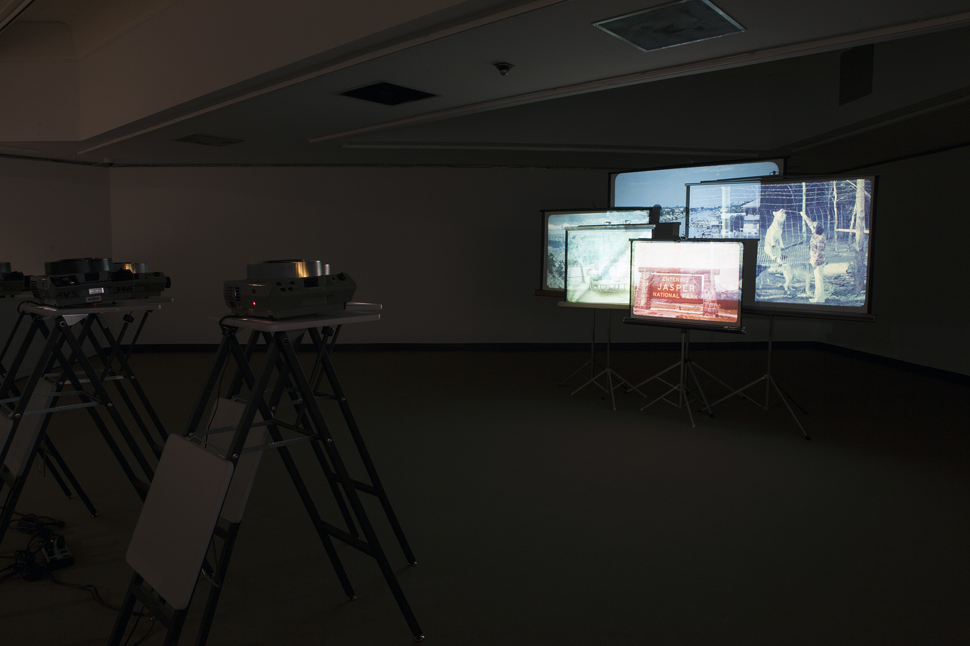 Vesna Pavlović, Search for Landscapes, Photographic installation with five 35 mm slide projectors, 80 slides each, five portable vintage projection screens, and five projector stands, Size variable, 2011